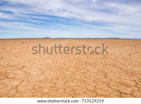 Drought causes a desert landscape in the Southern African savanna