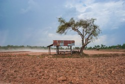 Drought in the rice field The result of the rain. During the rainy season in northeastern Thailand Southeast Asia