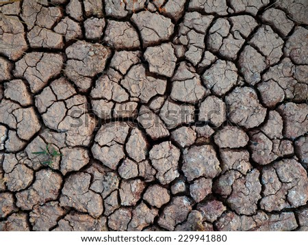 drought land , Arid lands background