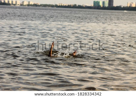 Drowning kid in the water Stock photo ©