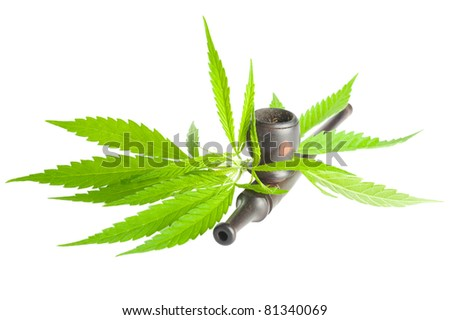 Drug cannabis. Marijuana flower bud and pipe isolated on white background
