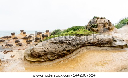 Drumstick shaped Rock at Yehliu Geopark in Taiwan. Yehliu Geopark is home to a number of unique geological formations. #1442307524