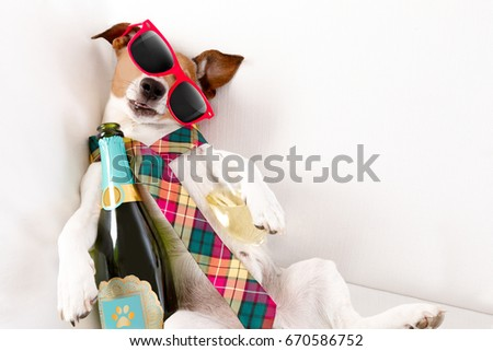 drunk jack russell terrier dog resting  or sleeping hangover with headache, with bottle and glass , wearing sunglasses and tie #670586752