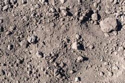 Dry agriculture field. Texture of soil. Abstract natural background. Top view.