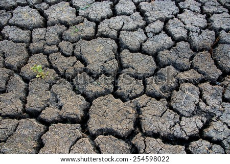 dry and crack soil #254598022