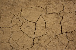 Dry and cracked earth. Dried yellow soil crack. Environmental problem drought and thirst. The texture of the ground dried up in cracks. Dry cracked soil earth background texture. Vintage, nature