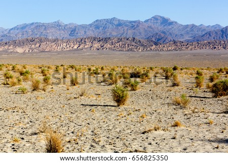 Shutterstock Dry arid desert landscape with rock formations, from Death Valley National Park : Devil's Cornfield