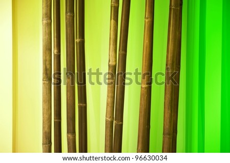 Dry Bamboo Branches - Bamboo Interior Decoration Elements. - stock photo