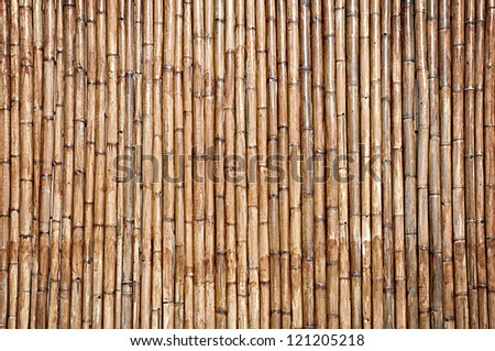 Dry bamboo wall texture background