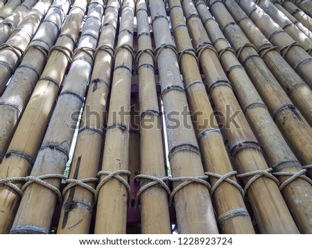 Dry Bamboo Wall tied with rope Texture Background,Bamboo fence background,Bamboo stick pattern #1228923724