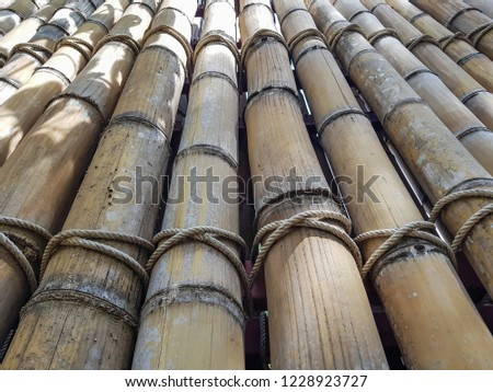 Dry Bamboo Wall tied with rope Texture Background,Bamboo fence background,Bamboo stick pattern #1228923727