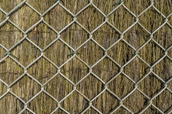 Dry branch fence with metal grill. Beautiful rustic closeup. Wood texture, abstract wooden background. Background texture old. High quality photo
