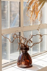Dry branch in a vase at the window