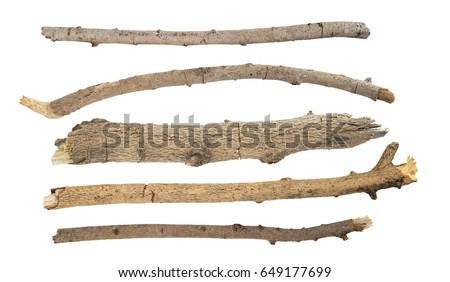 Dry branches Twigs isolated on white background #649177699
