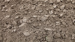 Dry brown ploughed cultivated soil, farming land ground texture background