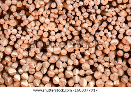 dry chopped firewood logs  was piled in a pile. for winter