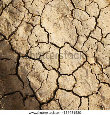 Dry cracked earth as texture