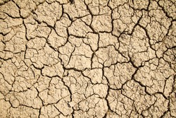 Dry cracked earth background