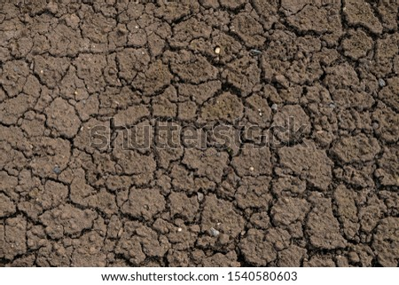 Dry cracked earth. Cracked earth texture for design. Textured background. #1540580603