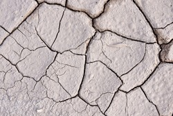 dry cracked earth. drought. It looks like dry, dehydrated skin. beautiful backgrounds.