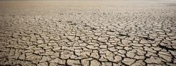Dry cracked ground in the desert.