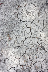 Dry cracked land background vertical