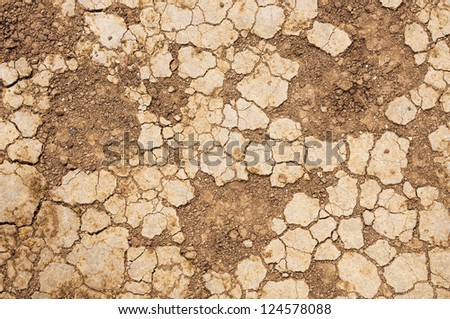 Dry cracked soil closeup before rain.