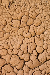Dry cracked soil during drought