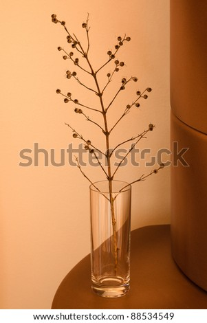 Dry decoration