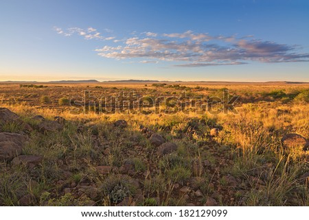 dry desert landscape in the morning or evening glow of warm yellow light