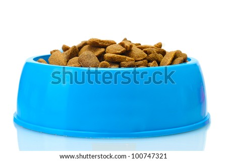 dry dog food and water in blue bowl isolated on white