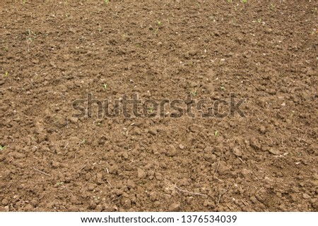 Dry dry land  Dry soil