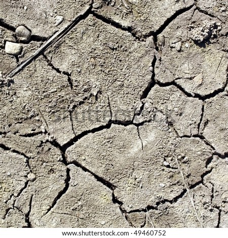 Dry earth in a field showing the effects of severe drought caused by global warming
