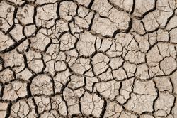 dry earth texture