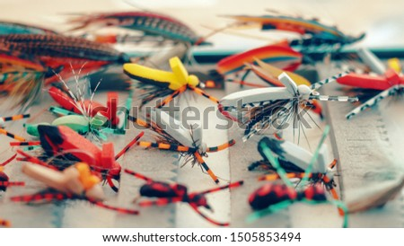 Dry flies for fly fishing.