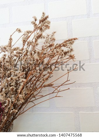 dry flower and decorate background ,dry flower ,decorate