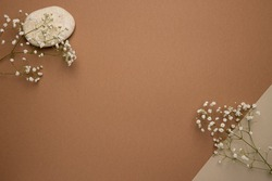 Dry flower branch and stone on a light brown background. Trend, minimal concept with copyspace top view