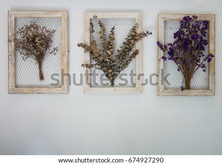 Dry flower picture frame on wall with copy space.