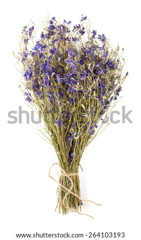 Stock Photo dry flowers isolated