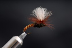 Dry fly handmade by the author.