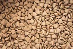 Dry food for dog and cat background