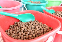 Dry food for fish,Pet feed pallet. Fish, bird, and animal feeding food in small plastic bin selling in zoo. For animal food background. Soft focus,Select focus