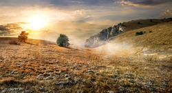 Dry grass on field in mountains in autumn