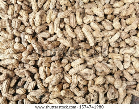 Dry Groundnut with natural daylight.