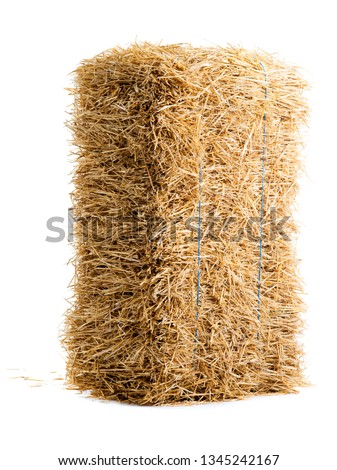 dry haystack isolated on white background #1345242167