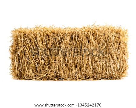 dry haystack isolated on white background Foto stock ©