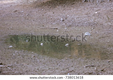 Dry lake with Clay mud. Beautiful Landscape with a Withered pond #738013618