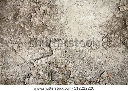 dry land at the summer - stock photo