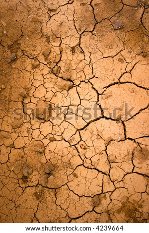 Dry land background