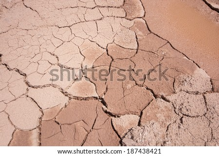 Dry land skin This dried mud pond resembles the aging of dry human skin.  #187438421